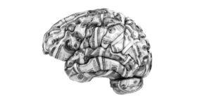 Mind Investing
